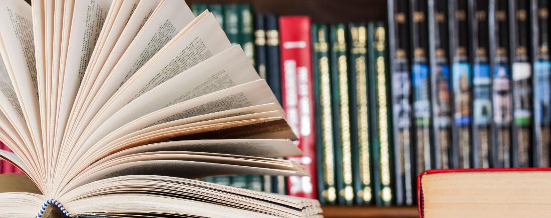 Deutsche Gesellschaft für Lesen und Schreiben (DGLS)